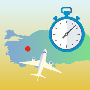 экспорт в Турцию вашего товара